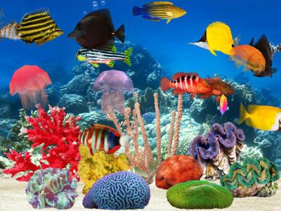 fishfarm.jpg