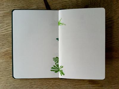 growthbook1.jpg