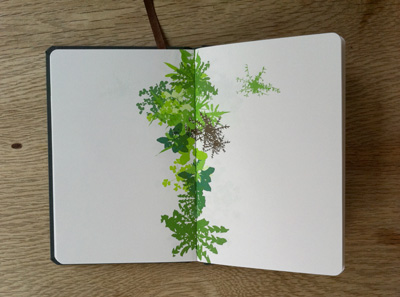 growthbook5.jpg