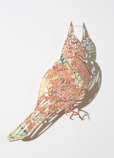 map_bird1.jpg