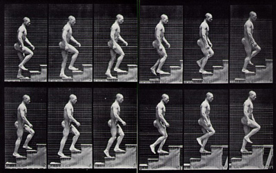 muybridge_stairs.jpg
