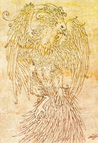 phoenix6.jpg